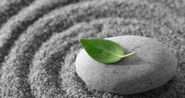 http://bluemooncandles.files.wordpress.com/2009/03/meditation-leaf.jpg